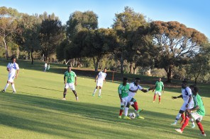 Adelaide's African Nations Cup